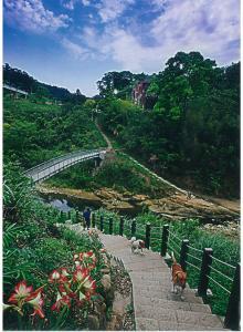 龍騰斷橋風景區